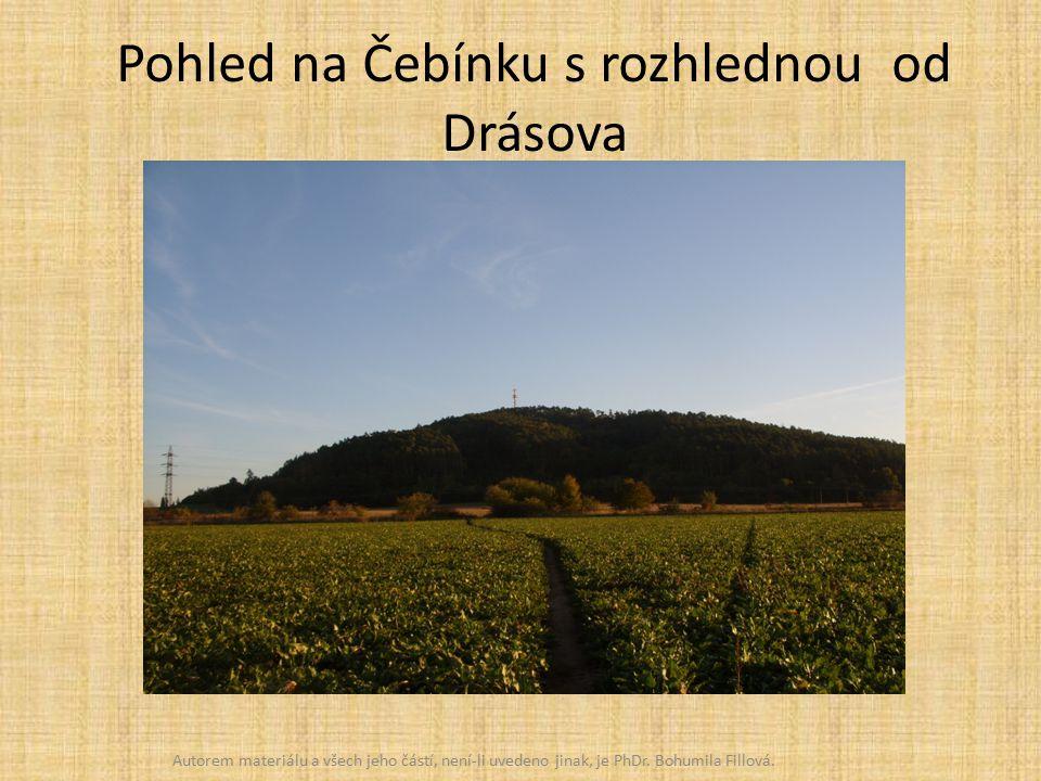Pohled na Čebínku s rozhlednou od Drásova Autorem materiálu a všech jeho částí, není-li uvedeno jinak, je PhDr.