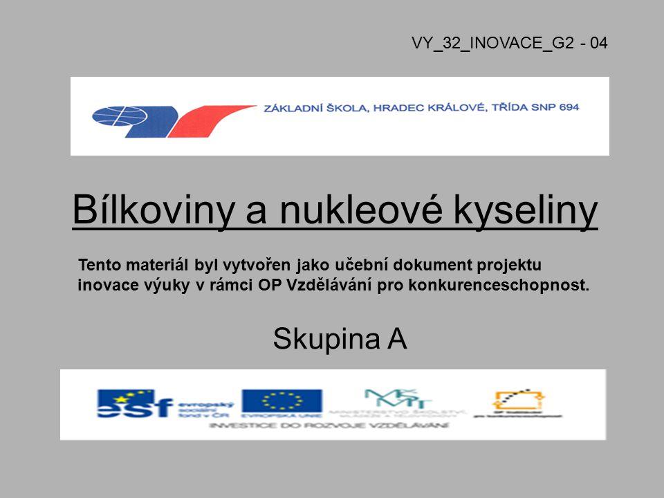 Bílkoviny a nukleové kyseliny Skupina A VY_32_INOVACE_G2 - 04 Tento materiál byl vytvořen jako učební dokument projektu inovace výuky v rámci OP Vzděl