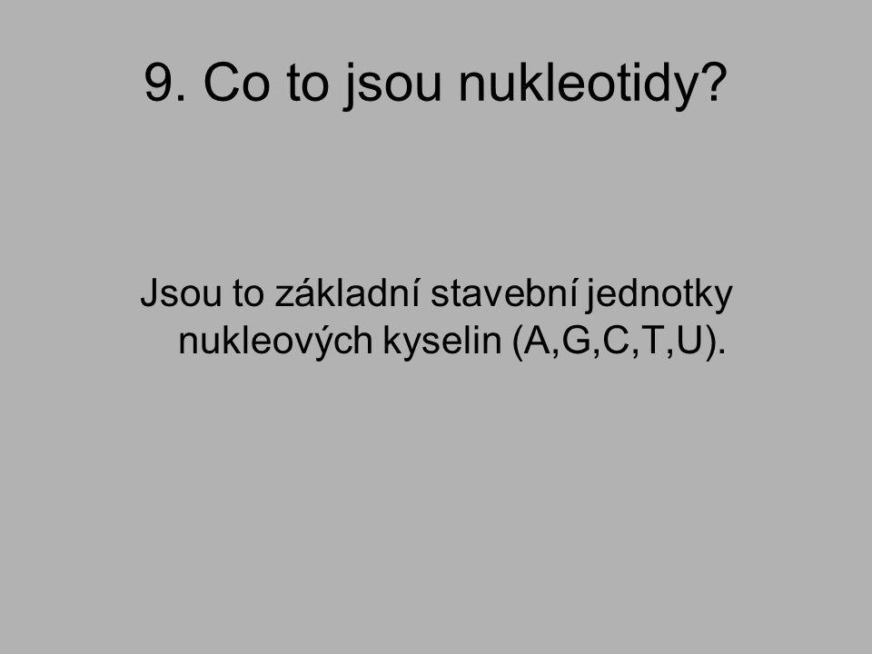 9. Co to jsou nukleotidy? Jsou to základní stavební jednotky nukleových kyselin (A,G,C,T,U).