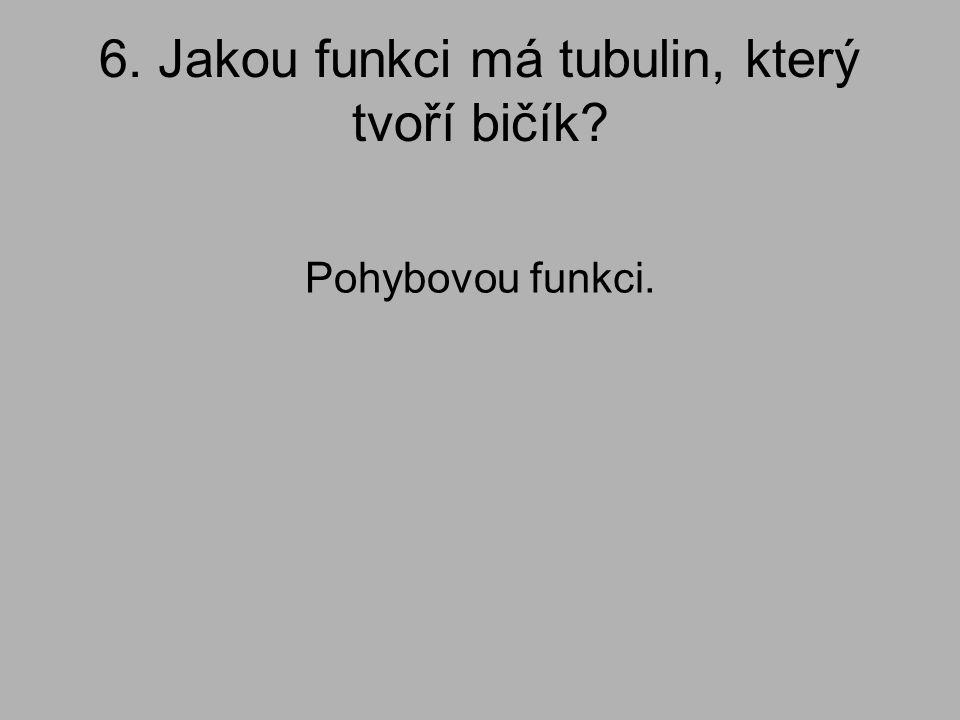 6. Jakou funkci má tubulin, který tvoří bičík? Pohybovou funkci.