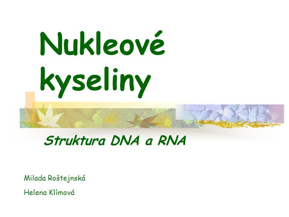 Obsah Typy nukleových kyselin DNA a RNA jsou tvořeny z nukleotidů Jaký je rozdíl mezi nukleotidem a nukleosidem.