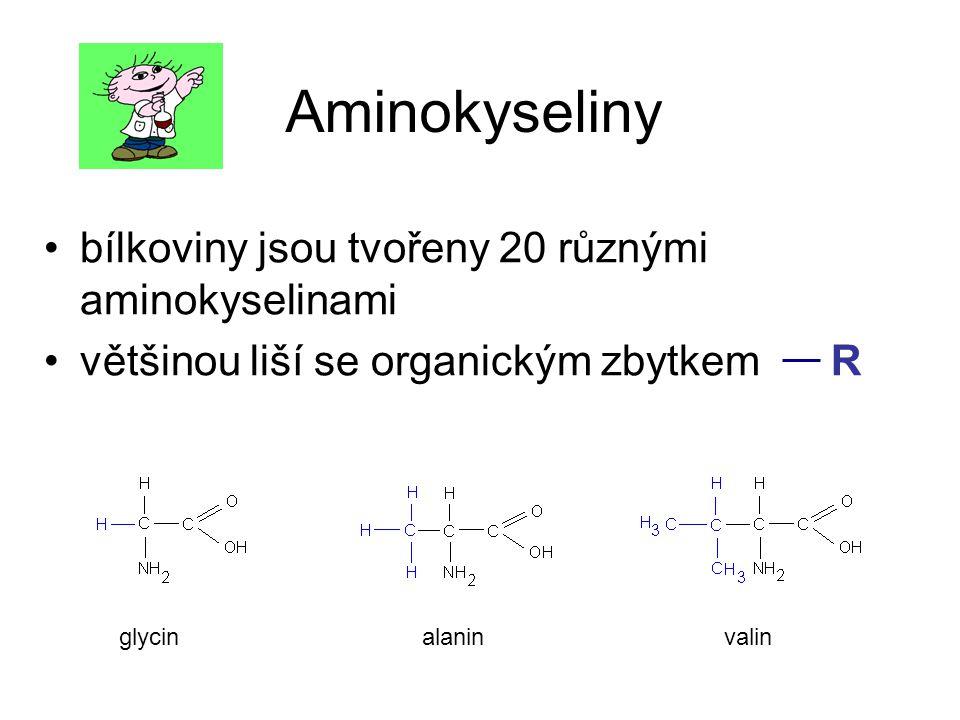 Aminokyseliny bílkoviny jsou tvořeny 20 různými aminokyselinami většinou liší se organickým zbytkem R glycinalaninvalin