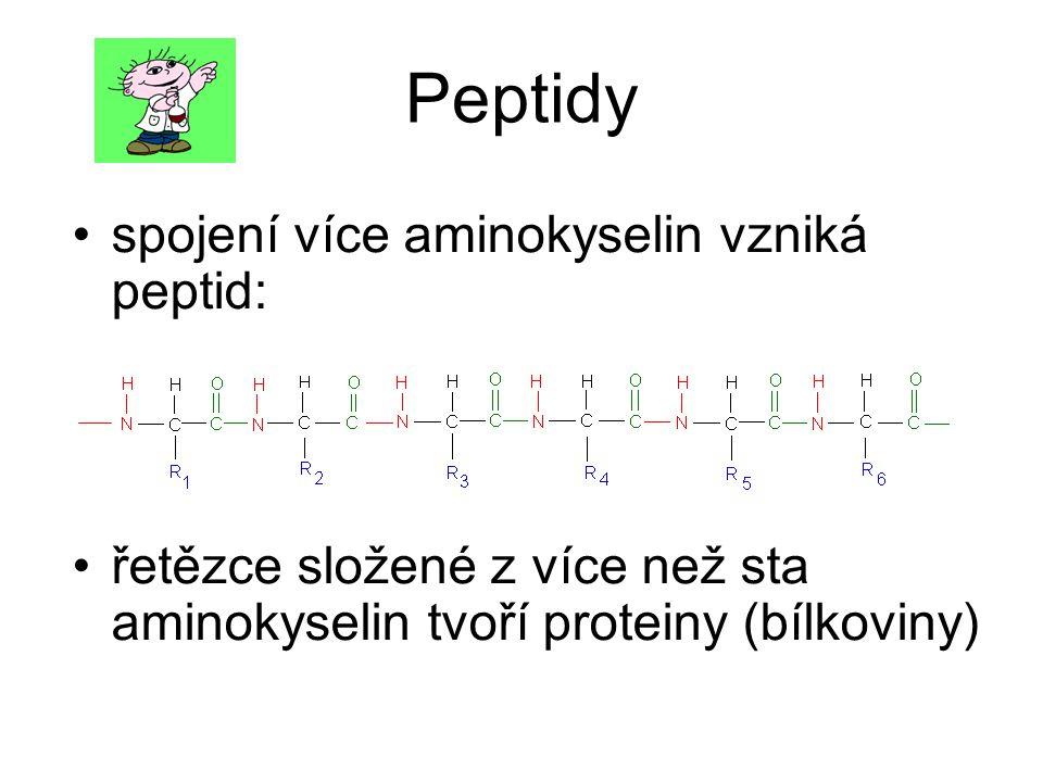 Peptidy spojení více aminokyselin vzniká peptid: řetězce složené z více než sta aminokyselin tvoří proteiny (bílkoviny)