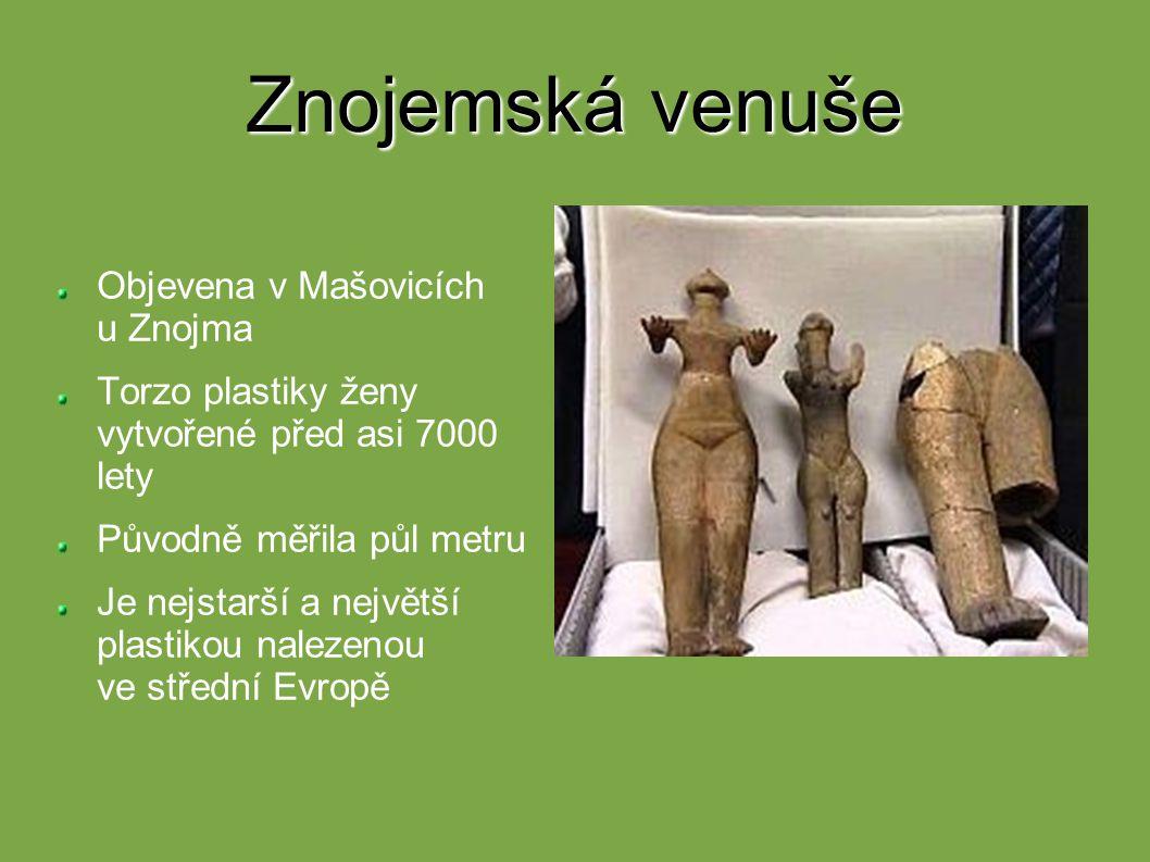 Znojemská venuše Objevena v Mašovicích u Znojma Torzo plastiky ženy vytvořené před asi 7000 lety Původně měřila půl metru Je nejstarší a největší plas