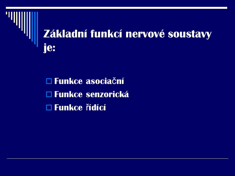 Základní funkcí nervové soustavy je:  Funkce asocia č ní  Funkce senzorická  Funkce ř ídící