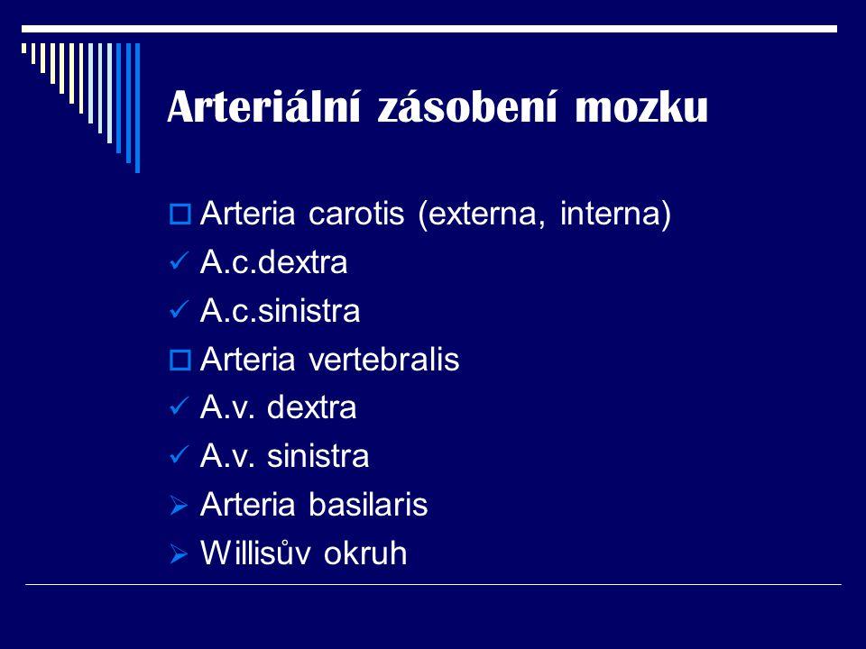 Arteriální zásobení mozku  Arteria carotis (externa, interna) A.c.dextra A.c.sinistra  Arteria vertebralis A.v. dextra A.v. sinistra  Arteria basil