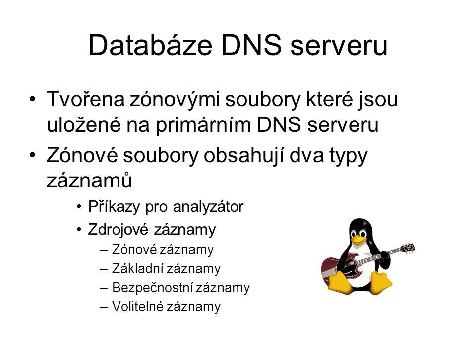Databáze DNS serveru Tvořena zónovými soubory které jsou uložené na primárním DNS serveru Zónové soubory obsahují dva typy záznamů Příkazy pro analyzátor Zdrojové záznamy –Zónové záznamy –Základní záznamy –Bezpečnostní záznamy –Volitelné záznamy