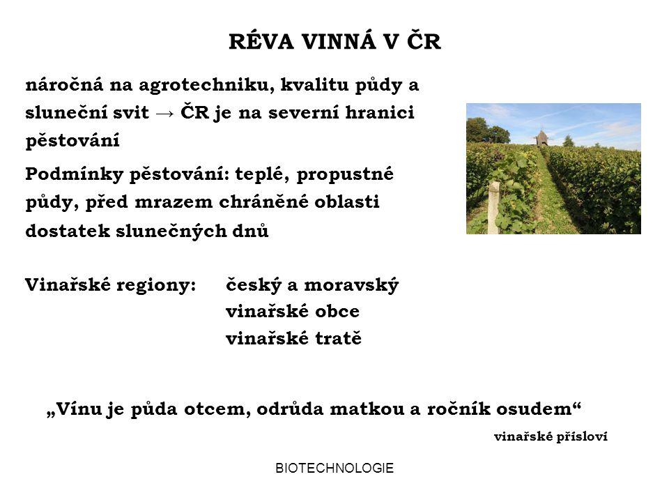 BIOTECHNOLOGIE TŘÍDĚNÍ VÍN v ČR podle obsahu cukru v použitém moštu (%) a)stolní víno11 b)jakostní víno15 c)víno s přívlastkem:kabinet19 pozdní sběr21 výběr z hroznů24 výběr z bobulí27 ledové a slámové víno27 Ledové a slámové víno se liší způsobem úpravy hroznů před lisováním (podle vinařského zákona č.115/1995 Sb.)