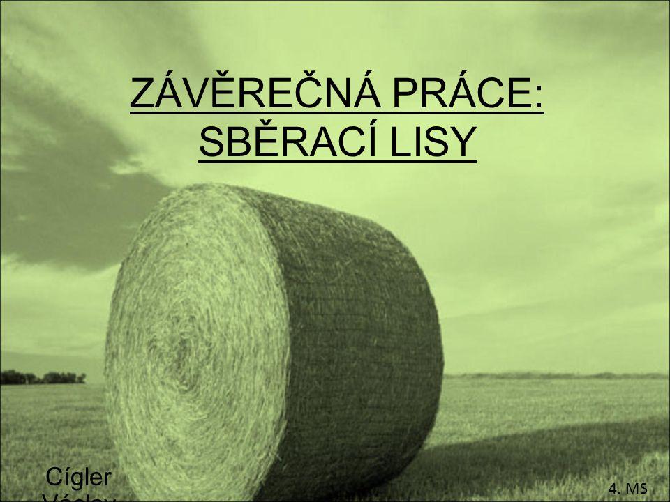 ZÁVĚREČNÁ PRÁCE: SBĚRACÍ LISY Cígler Václav 4. MS
