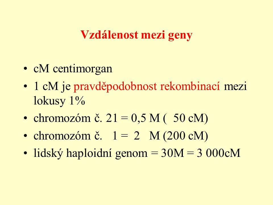 Vzdálenost mezi geny cM centimorgan 1 cM je pravděpodobnost rekombinací mezi lokusy 1% chromozóm č.