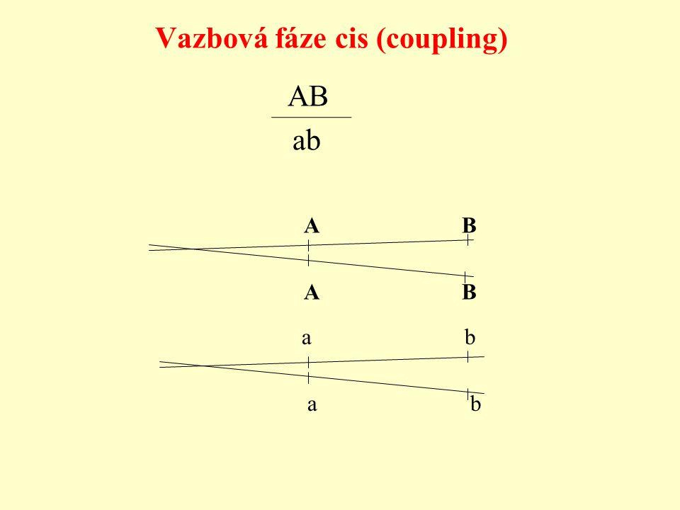 Vazbová fáze cis (coupling) a b A B ab A B a b