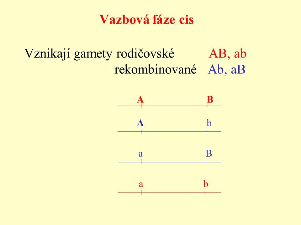 Vazbová fáze cis a B A B A b a b Vznikají gamety rodičovské AB, ab rekombinované Ab, aB