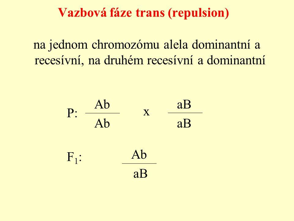 na jednom chromozómu alela dominantní a recesívní, na druhém recesívní a dominantní Vazbová fáze trans (repulsion) Ab aB P: Ab aB x F1: F1: