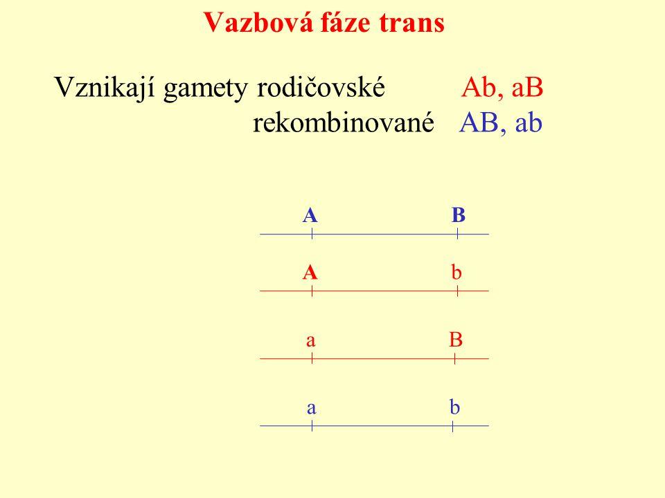 A B A b a b Vznikají gamety rodičovské Ab, aB rekombinované AB, ab Vazbová fáze trans