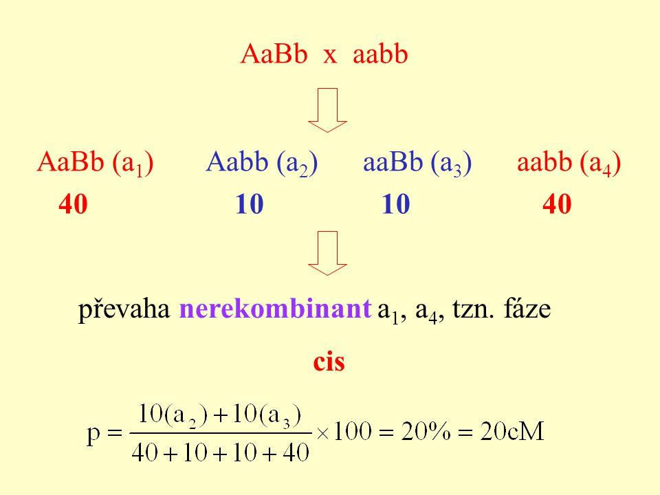 AaBb x aabb AaBb (a 1 ) Aabb (a 2 ) aaBb (a 3 ) aabb (a 4 ) 40 10 10 40 převaha nerekombinant a 1, a 4, tzn.