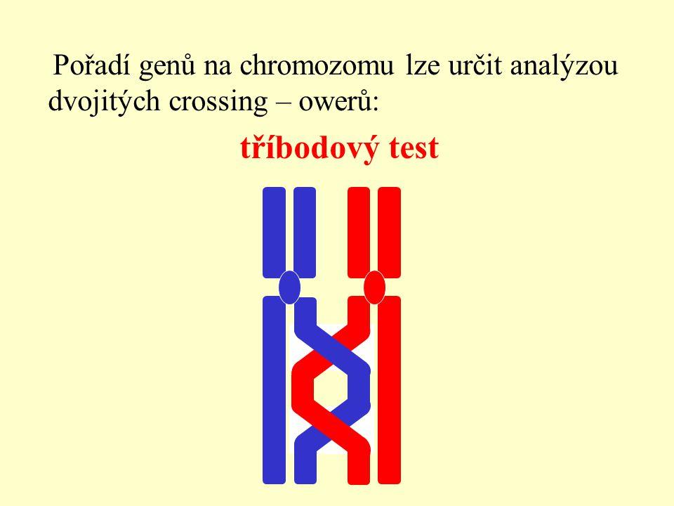 Pořadí genů na chromozomu lze určit analýzou dvojitých crossing – owerů: tříbodový test
