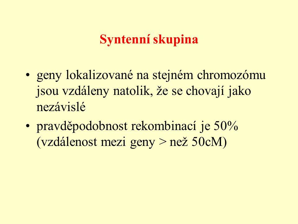 Syntenní skupina geny lokalizované na stejném chromozómu jsou vzdáleny natolik, že se chovají jako nezávislé pravděpodobnost rekombinací je 50% (vzdálenost mezi geny > než 50cM)