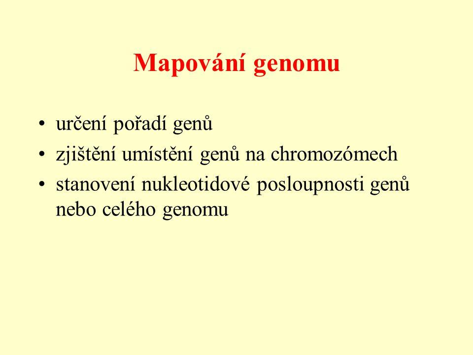 Mapování genomu určení pořadí genů zjištění umístění genů na chromozómech stanovení nukleotidové posloupnosti genů nebo celého genomu