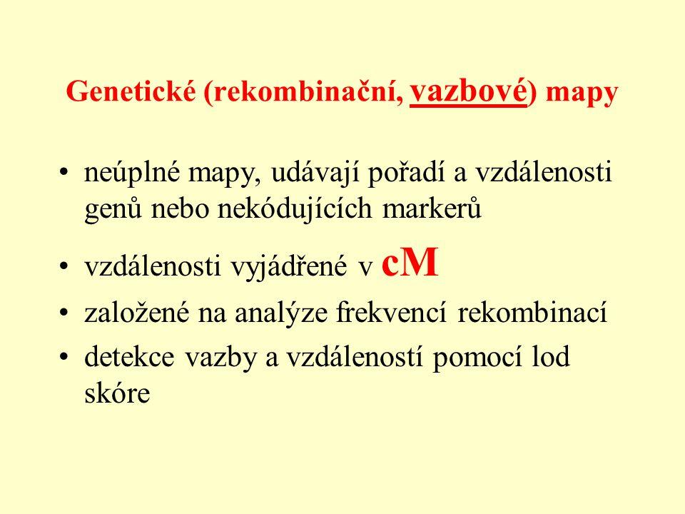 Genetické (rekombinační, vazbové ) mapy neúplné mapy, udávají pořadí a vzdálenosti genů nebo nekódujících markerů vzdálenosti vyjádřené v cM založené na analýze frekvencí rekombinací detekce vazby a vzdáleností pomocí lod skóre