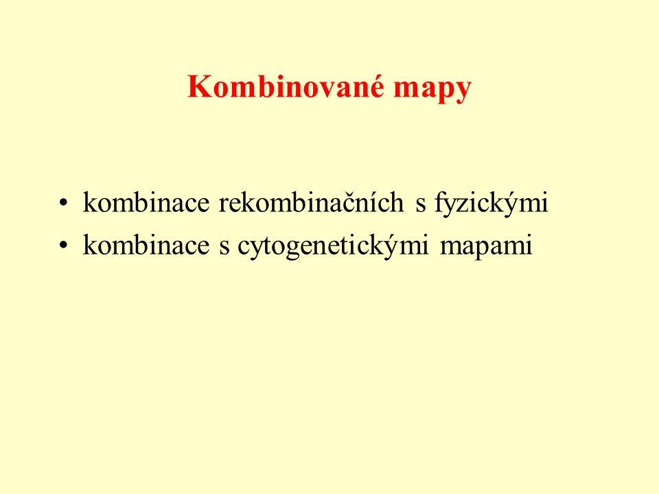 Kombinované mapy kombinace rekombinačních s fyzickými kombinace s cytogenetickými mapami