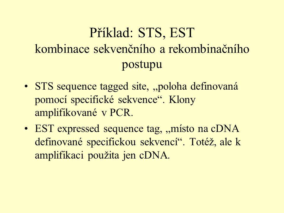 """Příklad: STS, EST kombinace sekvenčního a rekombinačního postupu STS sequence tagged site, """"poloha definovaná pomocí specifické sekvence ."""
