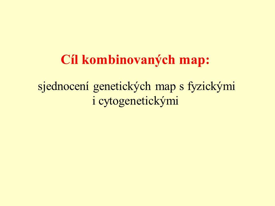 Cíl kombinovaných map: sjednocení genetických map s fyzickými i cytogenetickými
