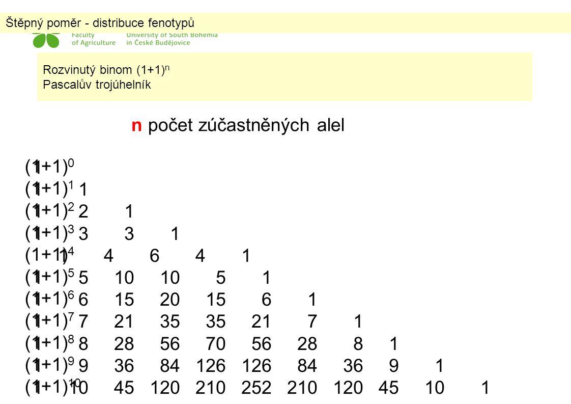 Štěpný poměr - distribuce fenotypů 1 1 2 1 1 3 3 1 1 4 6 4 1 1 5 10 10 5 1 1 6 15 20 15 6 1 1 7 21 35 35 21 7 1 1 8 28 56 70 56 28 8 1 1 9 36 84 126 1