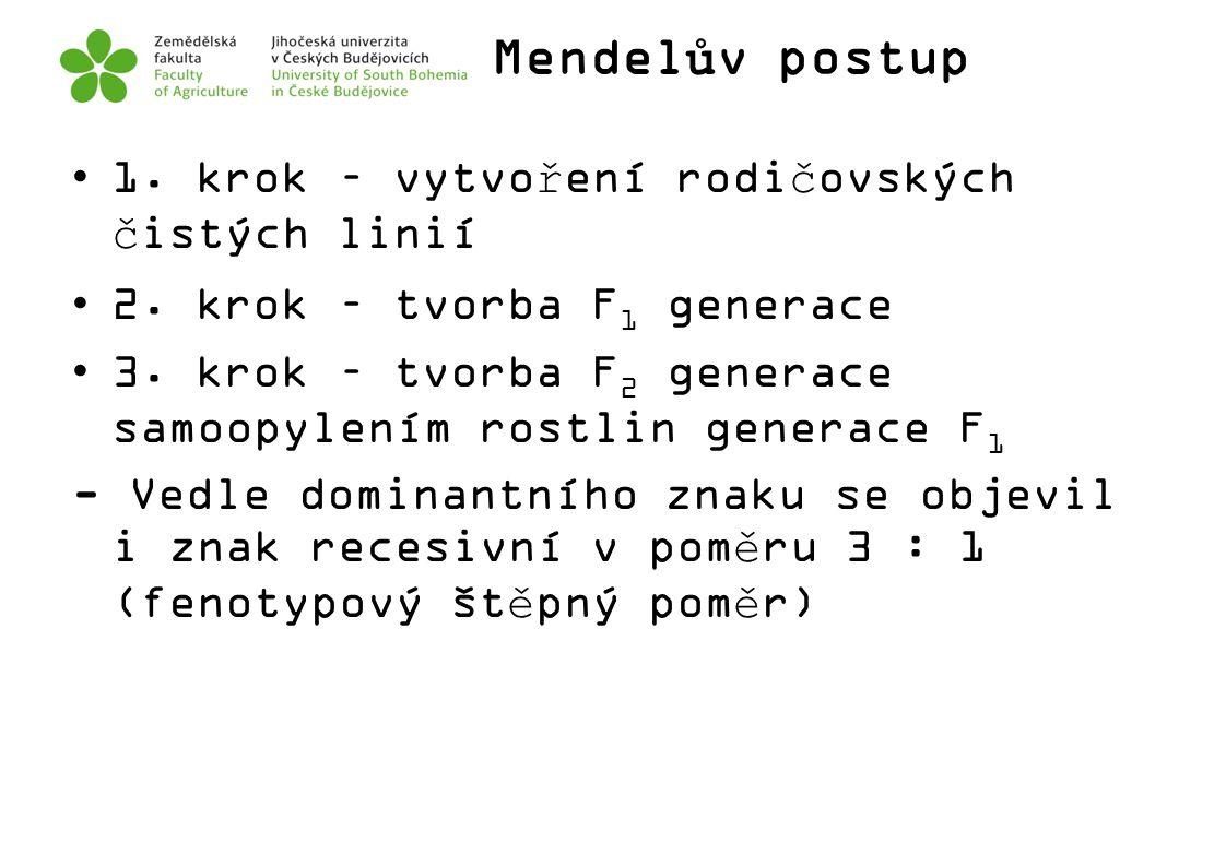 Mendelův postup 1. krok – vytvoření rodičovských čistých linií 2. krok – tvorba F 1 generace 3. krok – tvorba F 2 generace samoopylením rostlin genera