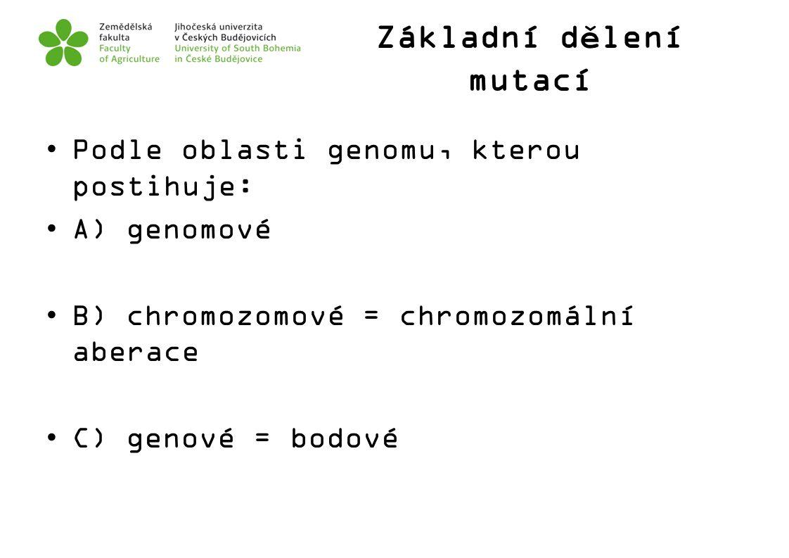 Základní dělení mutací Podle oblasti genomu, kterou postihuje: A) genomové B) chromozomové = chromozomální aberace C) genové = bodové