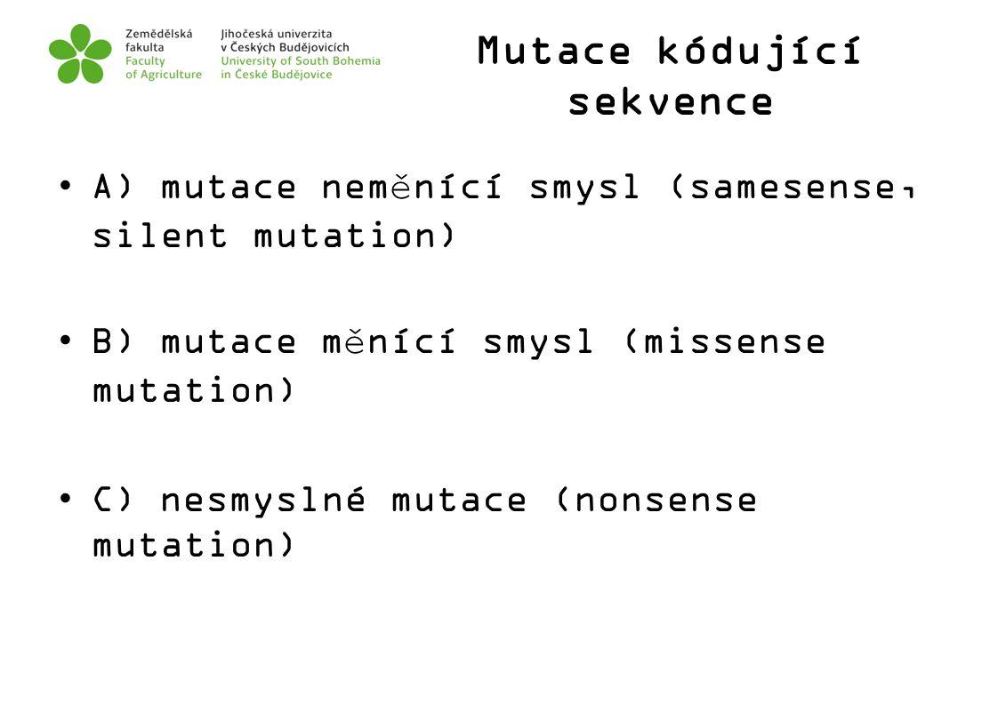 Mutace kódující sekvence A) mutace neměnící smysl (samesense, silent mutation) B) mutace měnící smysl (missense mutation) C) nesmyslné mutace (nonsens
