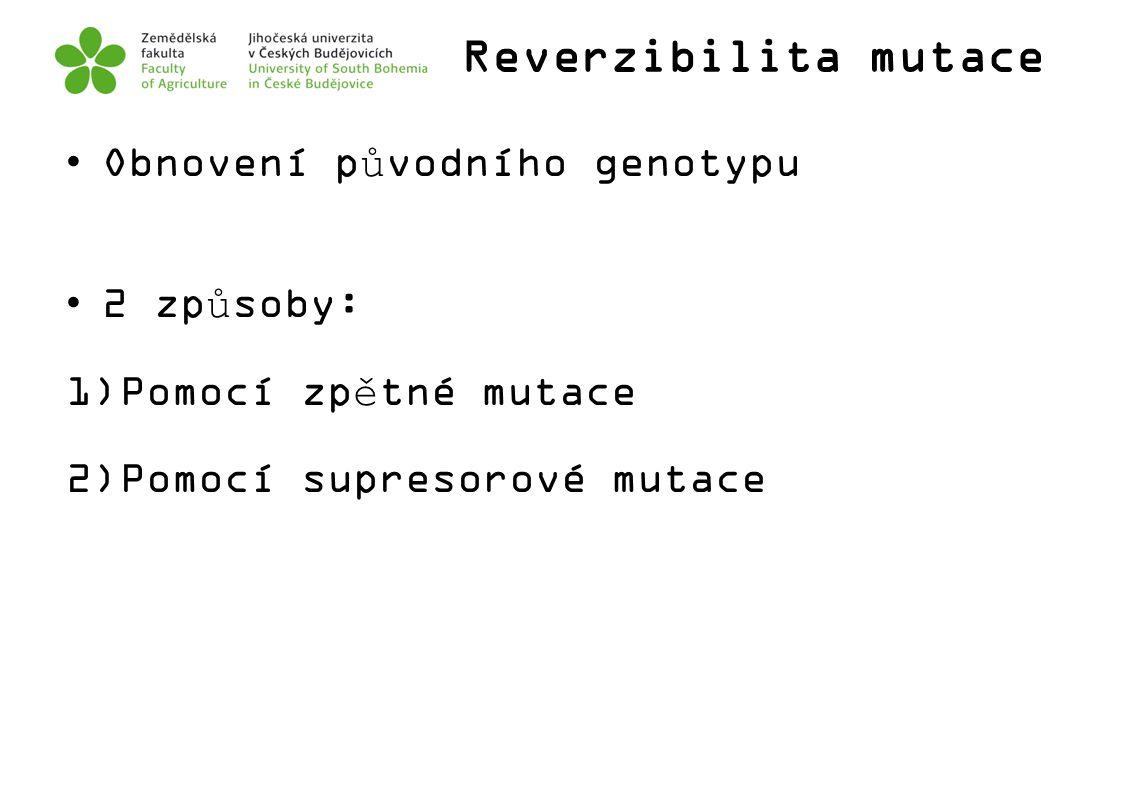 Reverzibilita mutace Obnovení původního genotypu 2 způsoby: 1)Pomocí zpětné mutace 2)Pomocí supresorové mutace