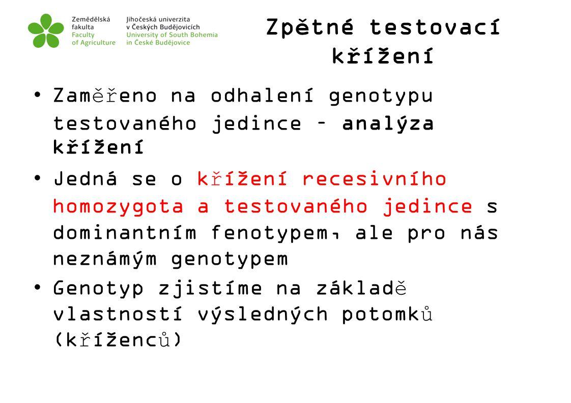 Zpětné testovací křížení Zaměřeno na odhalení genotypu testovaného jedince – analýza křížení Jedná se o křížení recesivního homozygota a testovaného j