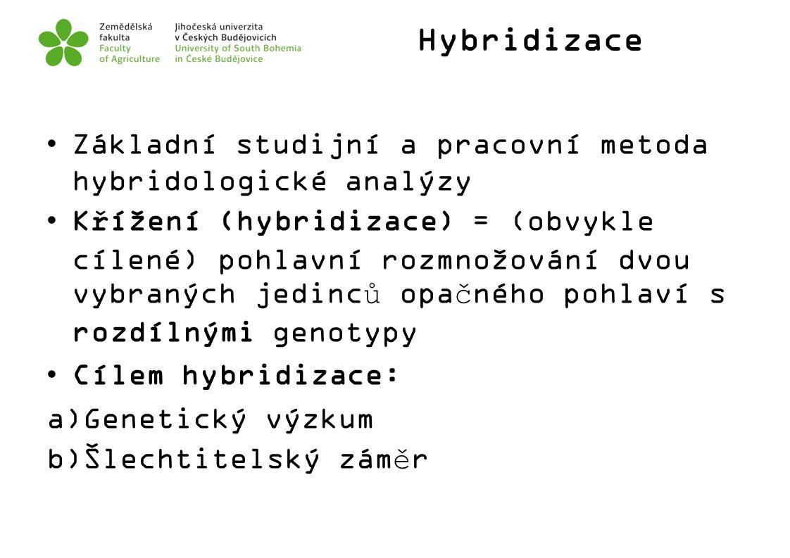 Hybridizace Základní studijní a pracovní metoda hybridologické analýzy Křížení (hybridizace) = (obvykle cílené) pohlavní rozmnožování dvou vybraných j