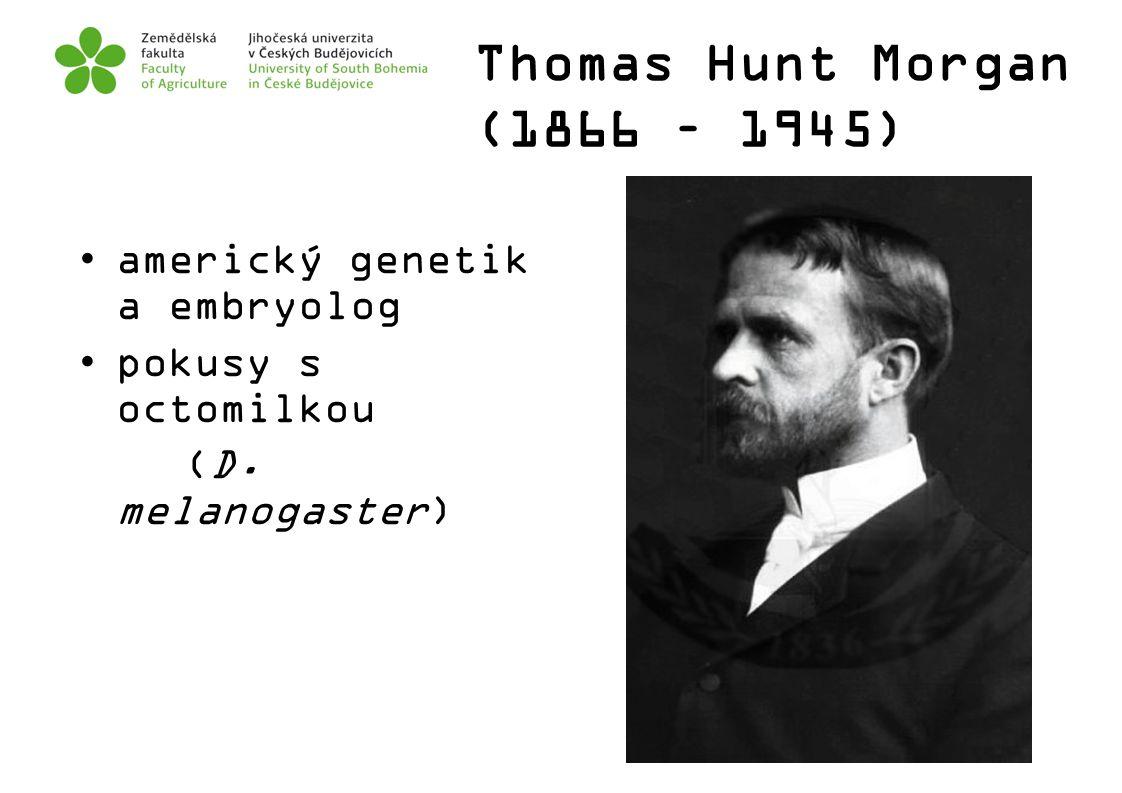 Thomas Hunt Morgan (1866 – 1945) americký genetik a embryolog pokusy s octomilkou (D. melanogaster)