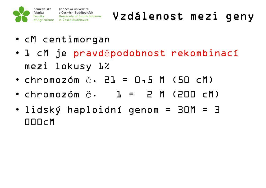 Vzdálenost mezi geny cM centimorgan 1 cM je pravděpodobnost rekombinací mezi lokusy 1% chromozóm č. 21 = 0,5 M (50 cM) chromozóm č. 1 = 2 M (200 cM) l