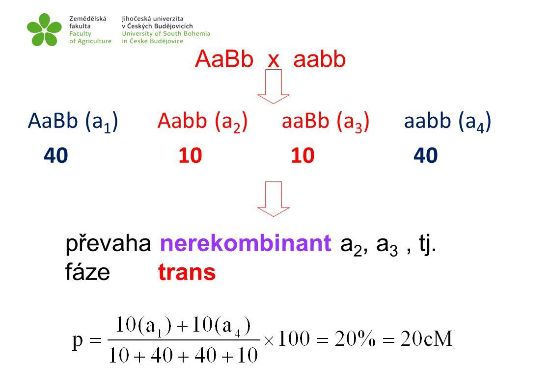 AaBb x aabb převaha nerekombinant a 2, a 3, tj. fáze trans AaBb (a 1 ) Aabb (a 2 ) aaBb (a 3 ) aabb (a 4 ) 40 10 10 40