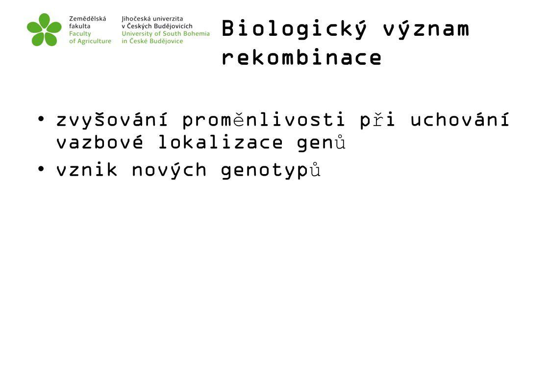 Biologický význam rekombinace zvyšování proměnlivosti při uchování vazbové lokalizace genů vznik nových genotypů