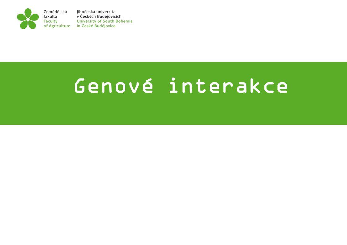 Genové interakce