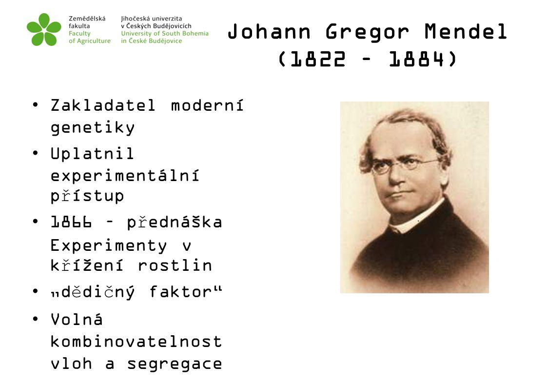 """Johann Gregor Mendel (1822 – 1884) Zakladatel moderní genetiky Uplatnil experimentální přístup 1866 – přednáška Experimenty v křížení rostlin """"dědičný"""