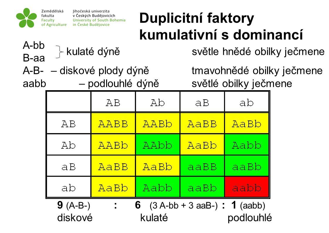 A-bb B-aa A-B- – diskové plody dýně tmavohnědé obilky ječmene aabb – podlouhlé dýně světlé obilky ječmene 9 (A-B-) diskové : 6 (3 A-bb + 3 aaB-) kulat