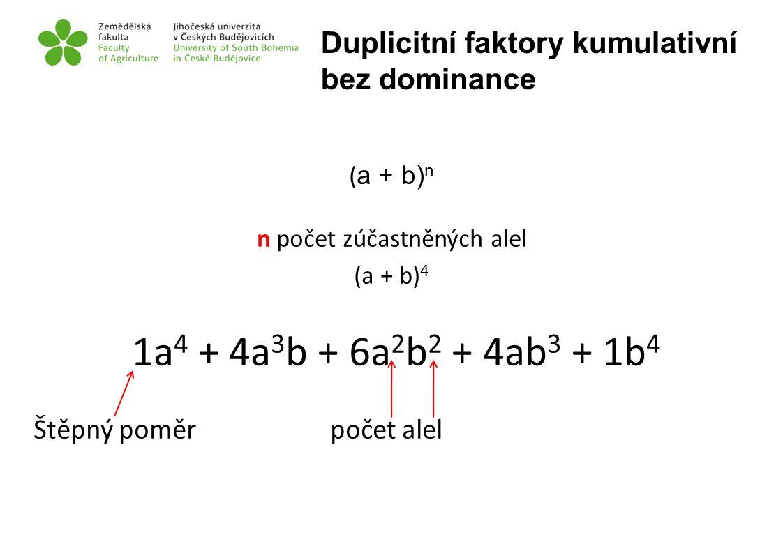 ( a + b) n n počet zúčastněných alel (a + b) 4 1a 4 + 4a 3 b + 6a 2 b 2 + 4ab 3 + 1b 4 Štěpný poměr počet alel Duplicitní faktory kumulativní bez domi