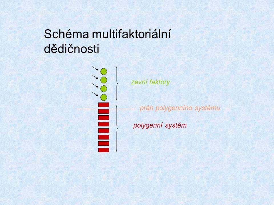 Schéma multifaktoriální dědičnosti zevní faktory práh polygenního systému polygenní systém