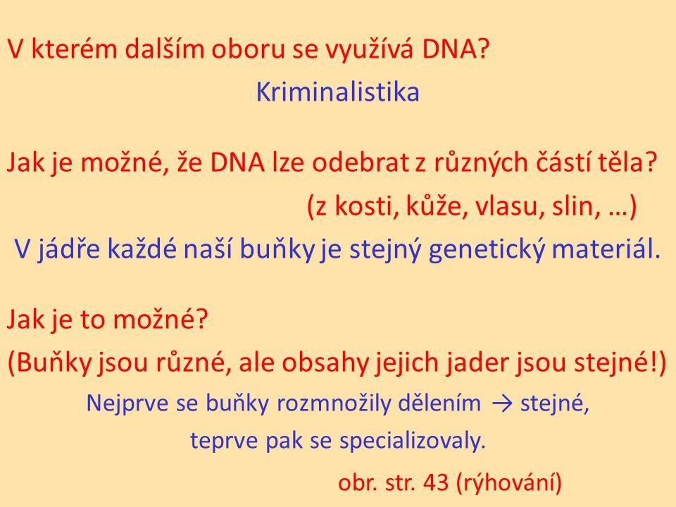 V kterém dalším oboru se využívá DNA.