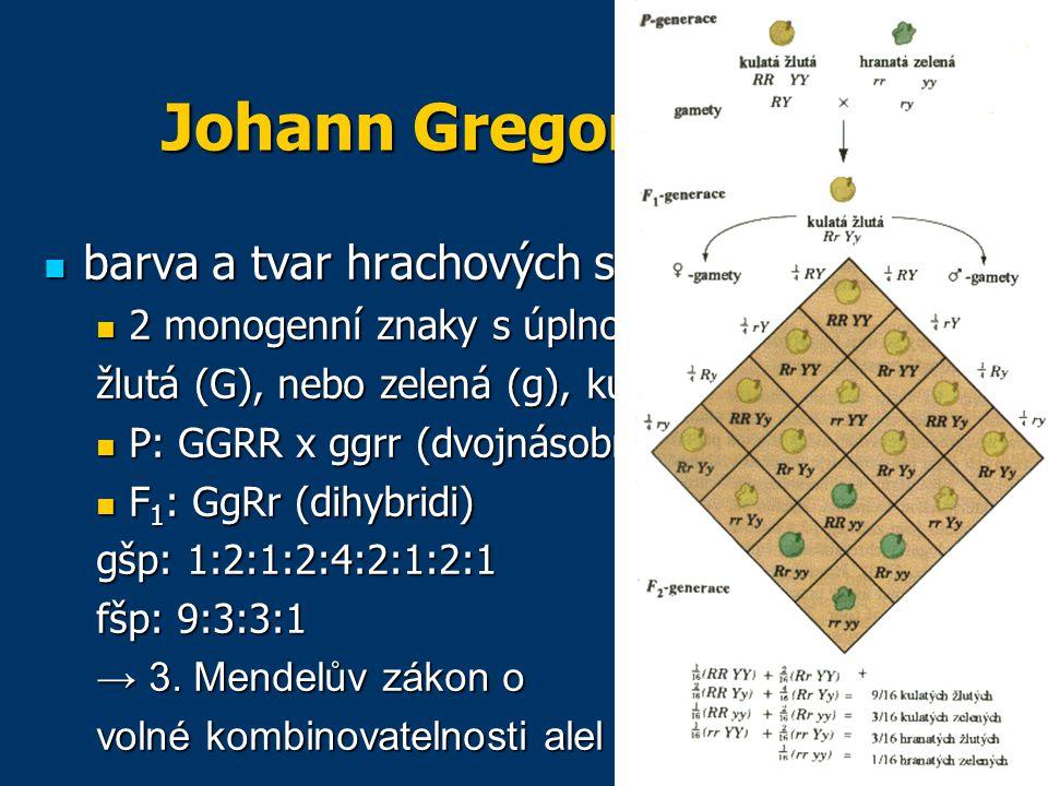 Johann Gregor Mendel barva a tvar hrachových semen barva a tvar hrachových semen 2 monogenní znaky s úplnou dominancí: 2 monogenní znaky s úplnou dominancí: žlutá (G), nebo zelená (g), kulatá (R), svraštělá (r) P: GGRR x ggrr (dvojnásobní homozygoti) P: GGRR x ggrr (dvojnásobní homozygoti) F 1 : GgRr (dihybridi) F 1 : GgRr (dihybridi) gšp: 1:2:1:2:4:2:1:2:1 fšp: 9:3:3:1 → 3.
