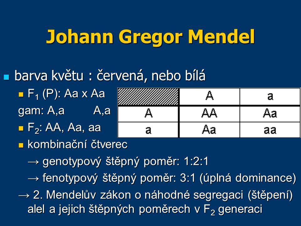 Johann Gregor Mendel barva květu : červená, nebo bílá barva květu : červená, nebo bílá F 1 (P): Aa x Aa F 1 (P): Aa x Aa gam: A,aA,a F 2 : AA, Aa, aa F 2 : AA, Aa, aa kombinační čtverec kombinační čtverec → genotypový štěpný poměr: 1:2:1 → fenotypový štěpný poměr: 3:1 (úplná dominance) → 2.