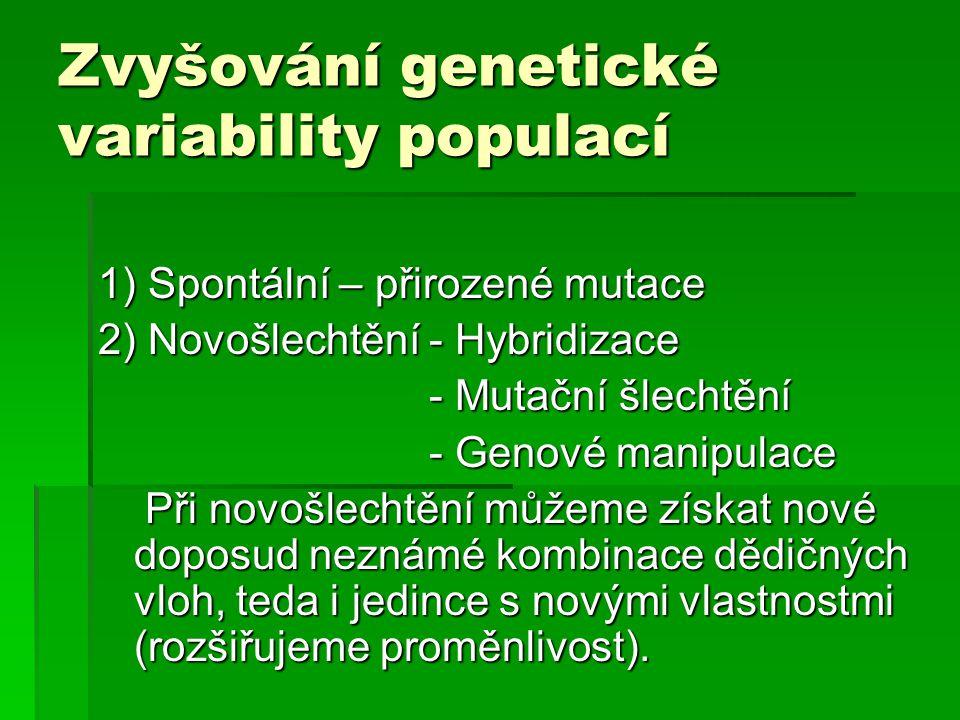 Zvyšování genetické variability populací 1) Spontální – přirozené mutace 2) Novošlechtění - Hybridizace - Mutační šlechtění - Mutační šlechtění - Geno