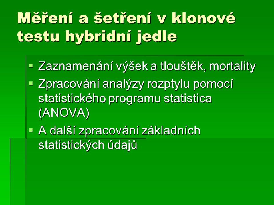 Měření a šetření v klonové testu hybridní jedle  Zaznamenání výšek a tlouštěk, mortality  Zpracování analýzy rozptylu pomocí statistického programu
