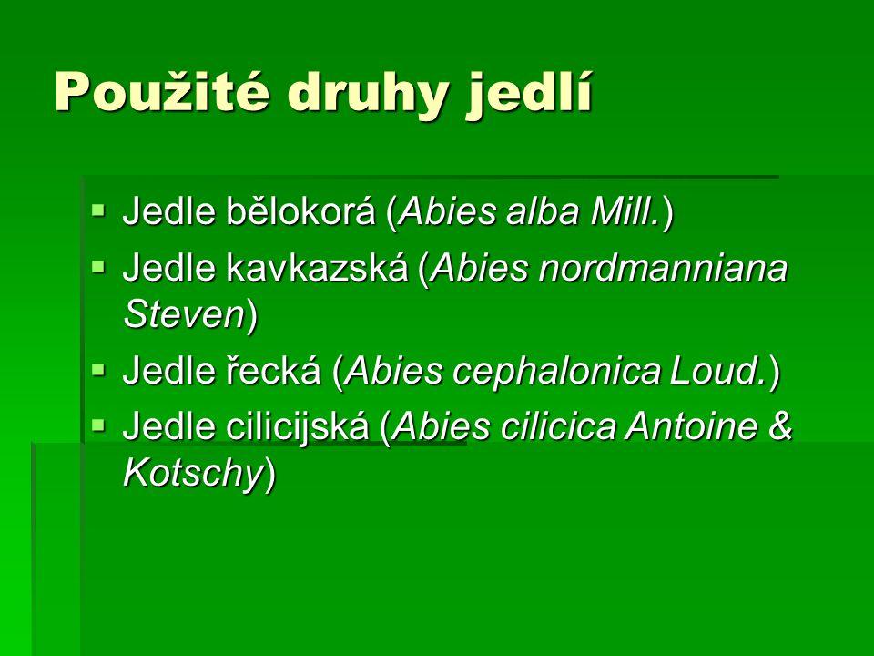 Použité druhy jedlí  Jedle bělokorá (Abies alba Mill.)  Jedle kavkazská (Abies nordmanniana Steven)  Jedle řecká (Abies cephalonica Loud.)  Jedle