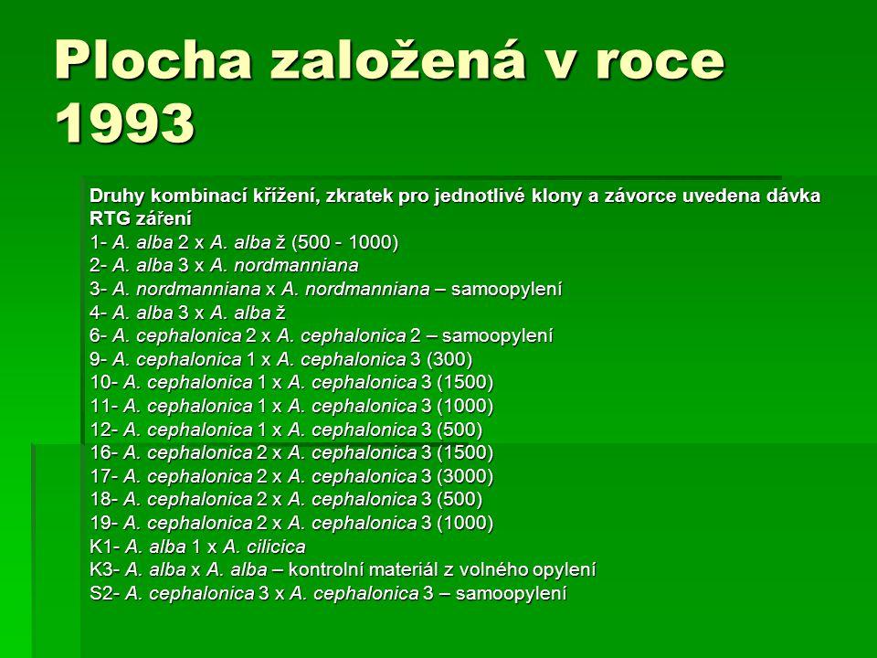 Plocha založená v roce 1993 Druhy kombinací křížení, zkratek pro jednotlivé klony a závorce uvedena dávka RTG záření 1- A. alba 2 x A. alba ž (500 - 1
