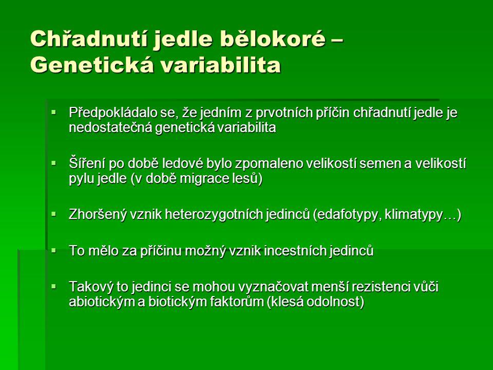 Chřadnutí jedle bělokoré – Genetická variabilita  Předpokládalo se, že jedním z prvotních příčin chřadnutí jedle je nedostatečná genetická variabilit